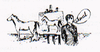 Magritte 1929